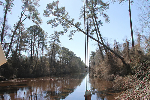 Dismal Swamp Canal continues 85-year revival